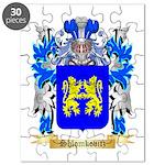 Shlomkovitz Puzzle