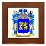 Shlomkovitz Framed Tile