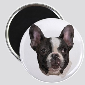 Boston Terrier Portrait Art Magnets