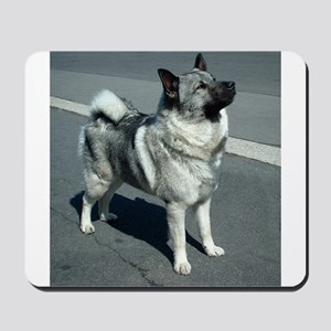 norwegian elkhound full 5 Mousepad