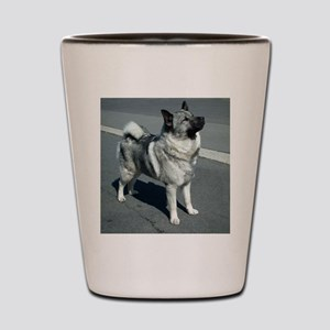 norwegian elkhound full 5 Shot Glass