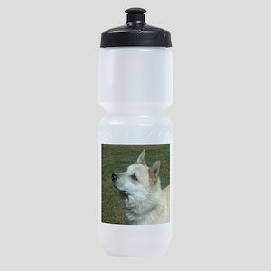 norwegian buhund Sports Bottle