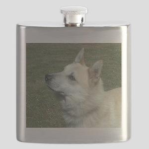 norwegian buhund Flask