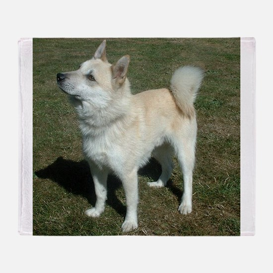 norwegian buhund full Throw Blanket