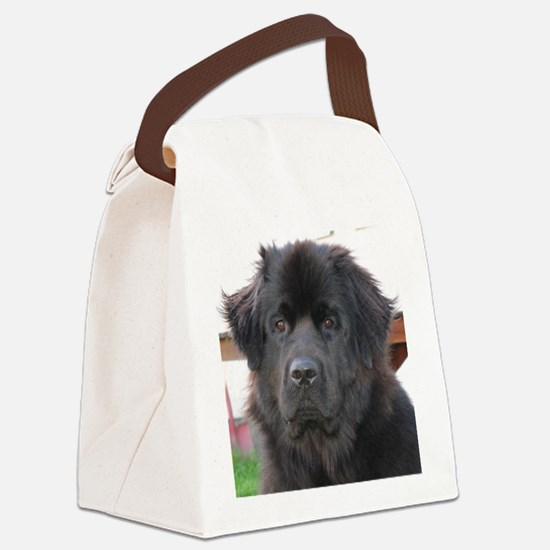 newfie 2 Canvas Lunch Bag