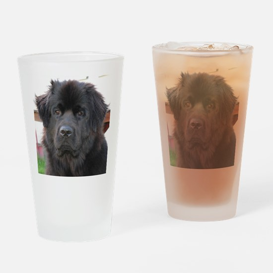 newfie 2 Drinking Glass