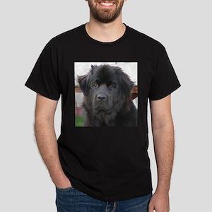 newfie 2 T-Shirt