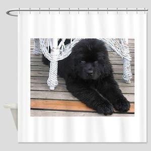 newfie 3 puppy Shower Curtain