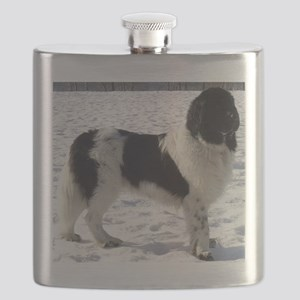 newfie 2 full Flask