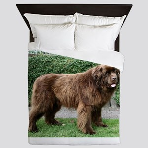 newfie 4 full Queen Duvet