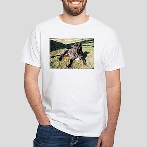 neapolitan mastiff laying T-Shirt