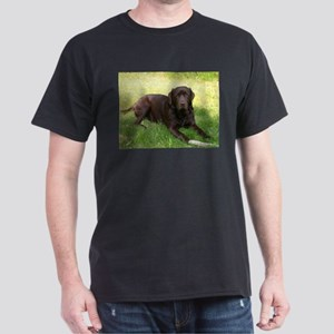 chocolate lab laying T-Shirt