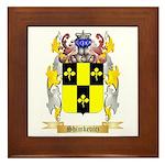 Shimkevicz Framed Tile