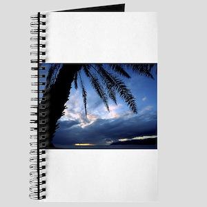 palm tree Journal