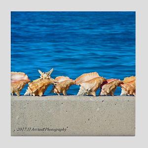 Bahamas Shells Tile Coaster