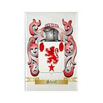 Shiel Rectangle Magnet (100 pack)
