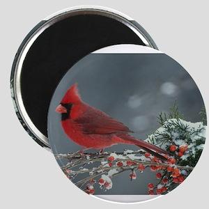 Cardinal Magnets