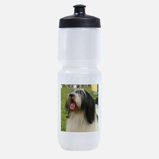 polish lowland sheepdog Sports Bottle
