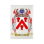 Sheffield Rectangle Magnet (100 pack)
