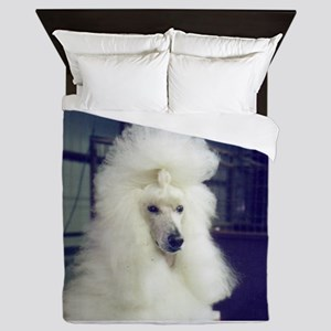 poodle white Queen Duvet