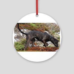 plott hound full Round Ornament
