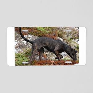 plott hound full Aluminum License Plate
