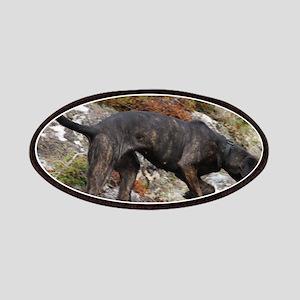 plott hound full Patch