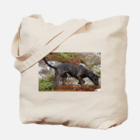 plott hound full Tote Bag