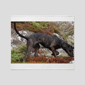 plott hound full Throw Blanket