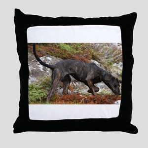 plott hound full Throw Pillow