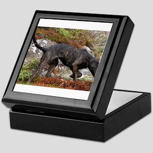 plott hound full Keepsake Box