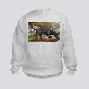 plott hound full Sweatshirt