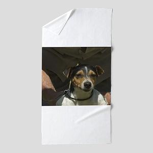 parson russell terrier Beach Towel
