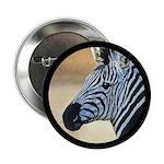 Zebra Portrait 2.25
