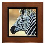 Zebra Portrait Framed Tile