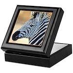 Zebra Portrait Keepsake Box