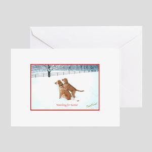 Christmas Pet Greeting Cards