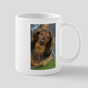 Dachshund Long Haired Large Mugs