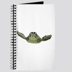 Green Sea Turtle Journal