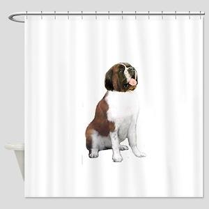 Saint Bernard (#1) Shower Curtain