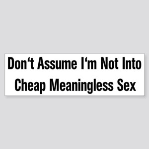 Meaningless Sex Bumper Sticker