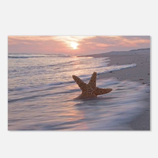 Funny Starfish beach Postcards (Package of 8)