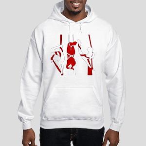 Aerial Silks Hooded Sweatshirt