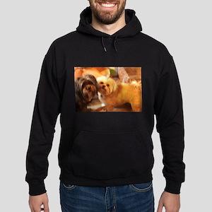 Kona and Koko dogs at play Sweatshirt