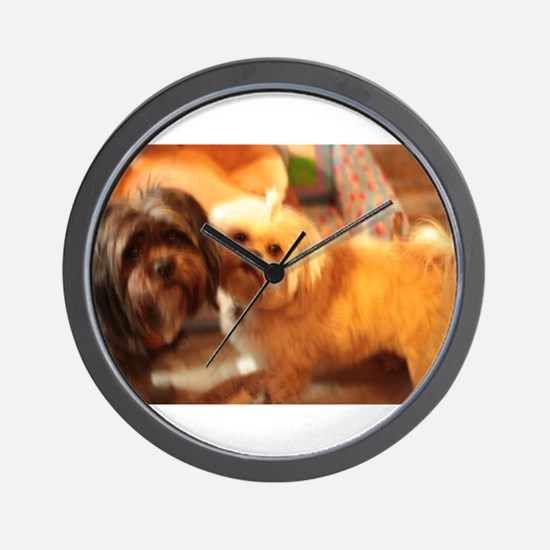 Kona and Koko dogs at play Wall Clock