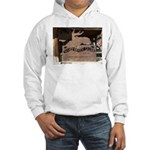 Mangy Moose Hooded Sweatshirt