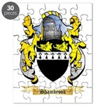 Shambrook Puzzle