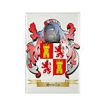Sevilla Rectangle Magnet (10 pack)