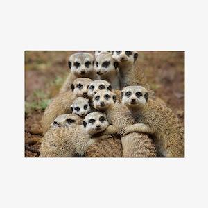Meercat Family Rectangle Magnet