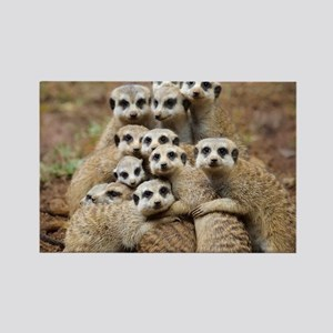 Meercat Family Rectangle Magnet